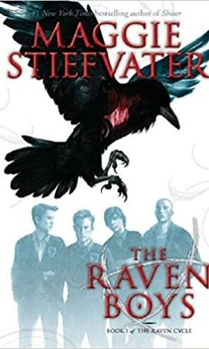 Cover of The Raven Boys by Maggie Stiefvater. There is a drawn picture of four teenage-ish boys with a large crow on top.